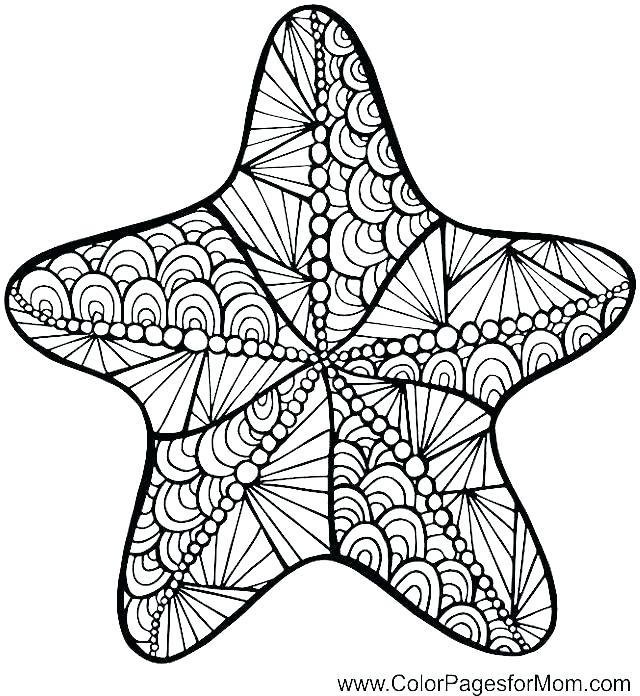 640x696 Sea Urchin Coloring Page Sea Urchin Coloring Page Pin Sea Urchin