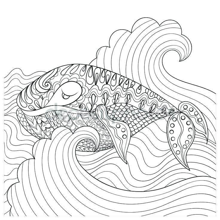 736x736 Sea Urchin Coloring Page Sea Urchin Coloring Page Sea Urchin Kelp