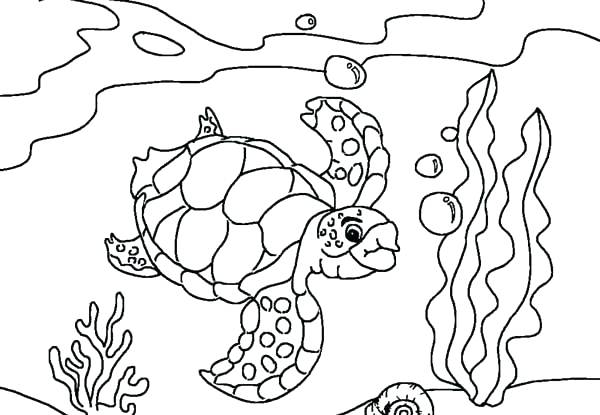 600x415 Sea World Coloring Pages World Coloring Page Amazing World Map
