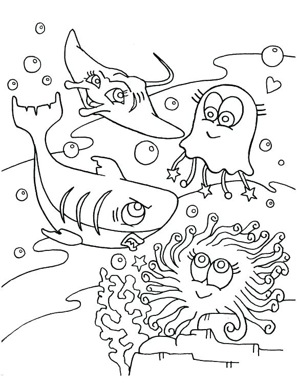 580x750 This Is Seahawks Coloring Page Images Incredible Seahawks Color