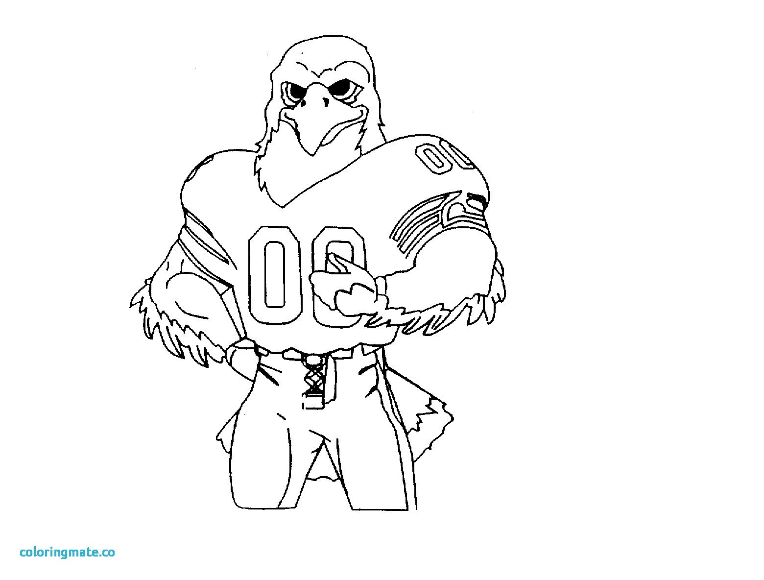 1560x1184 Seattle Seahawks Logo Coloring Page Free Printable Pages Within
