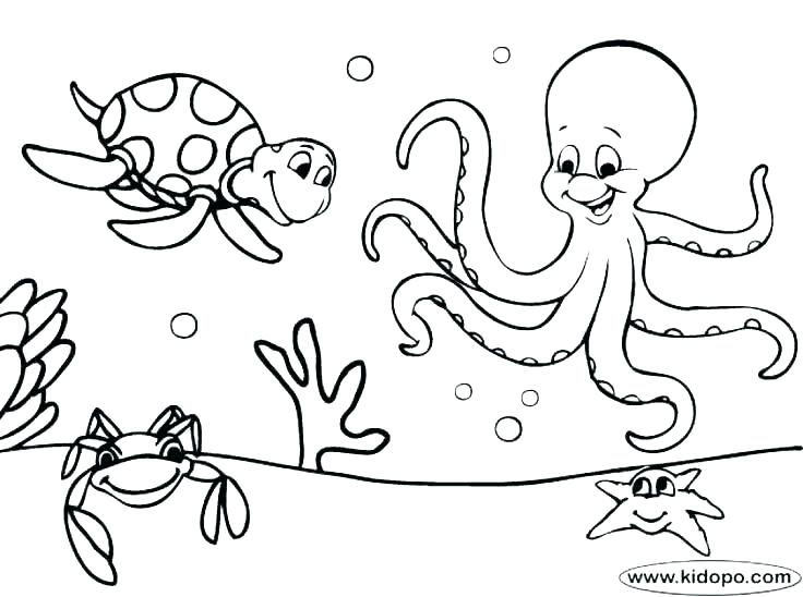 736x548 Seattle Seahawks Coloring Pages Free Logo Page