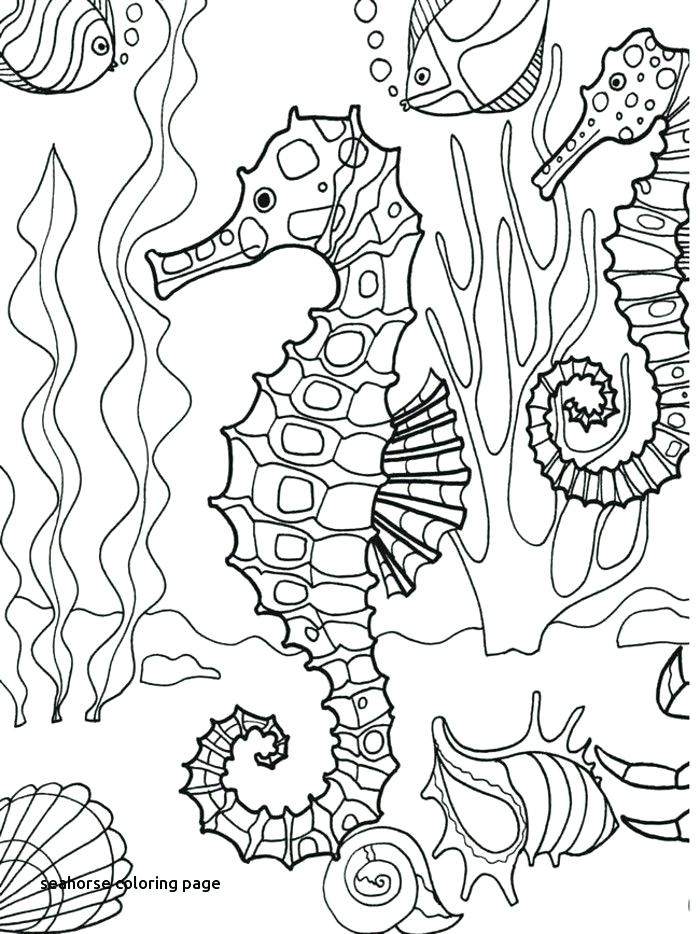 700x934 Seahorse Coloring Page For Kids Free Printable Picture This