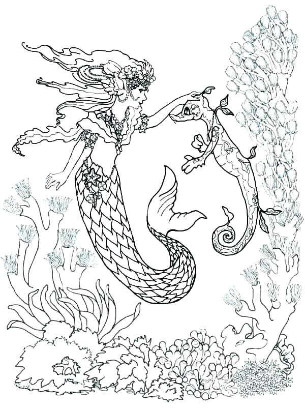 600x806 Seahorse Coloring Page Seahorse Coloring Page Free Printable Pages