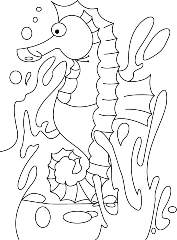 708x960 Get This Seahorse Coloring Pages Free Printable !