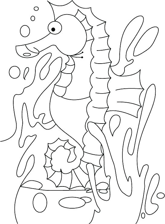 546x740 Seahorse Coloring Pages To Print Seahorse Coloring Page Seahorse