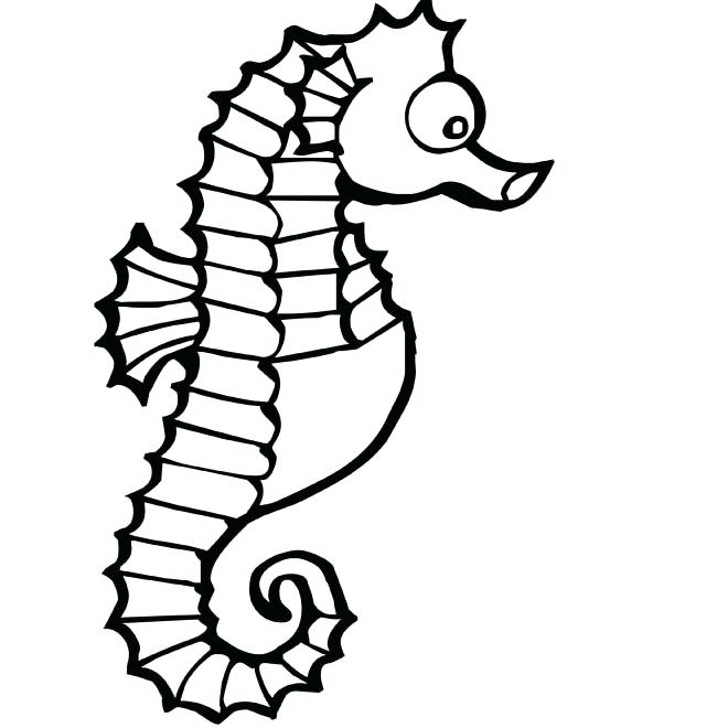 650x660 Seahorse Coloring Pictures Entrancing Seahorse Ures To Color