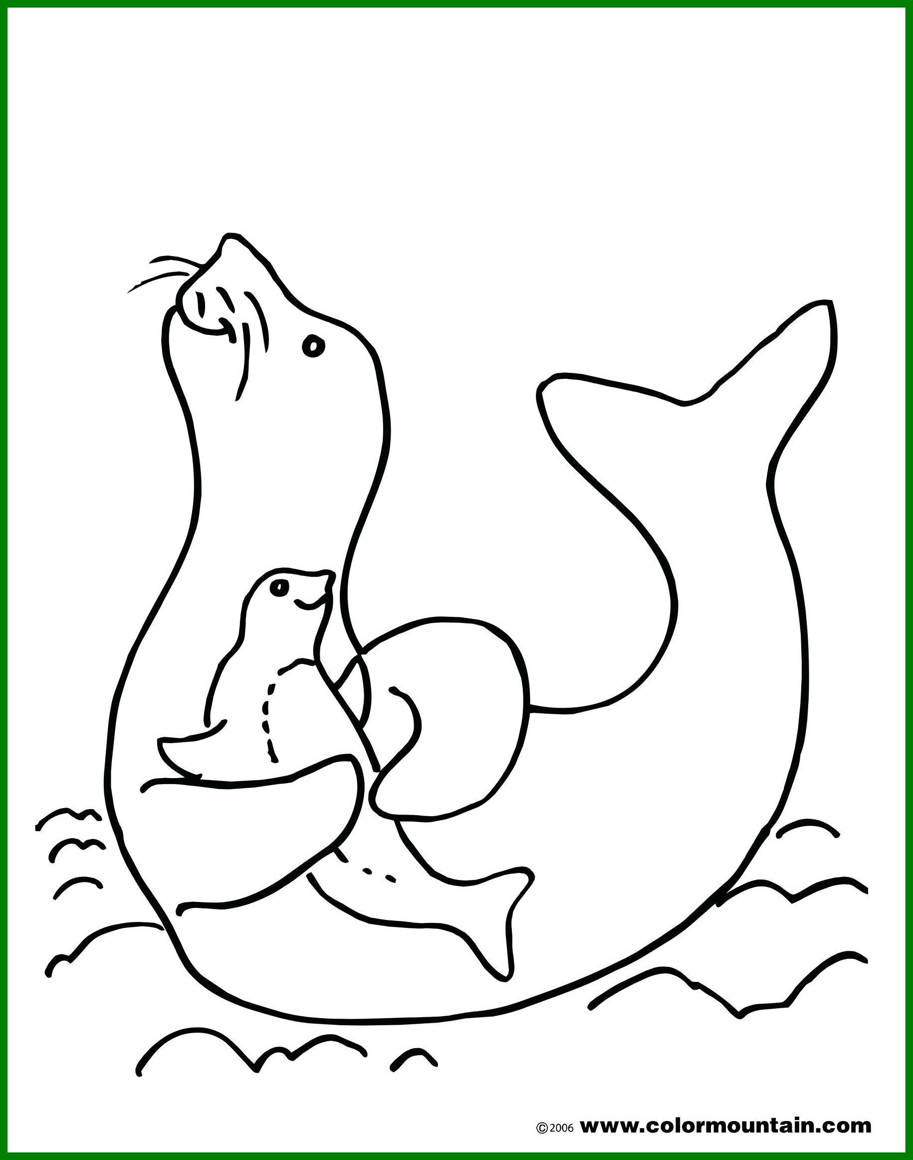1830x2324 Awesome Seal Coloring Page Unique Animals Monk Printable Image