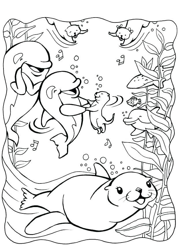 620x875 Seal Coloring Pages Seal Coloring Pages Seal Coloring Free