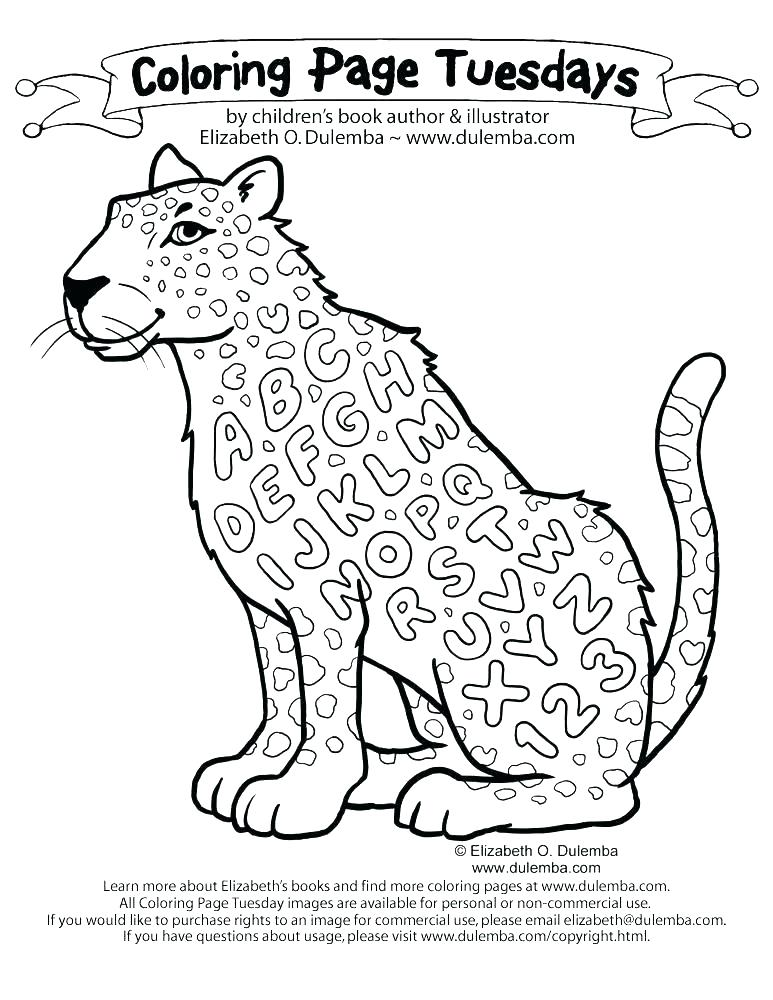 773x1000 Seals Coloring Pages Medium Size Of Seal Coloring Pages Best Cute