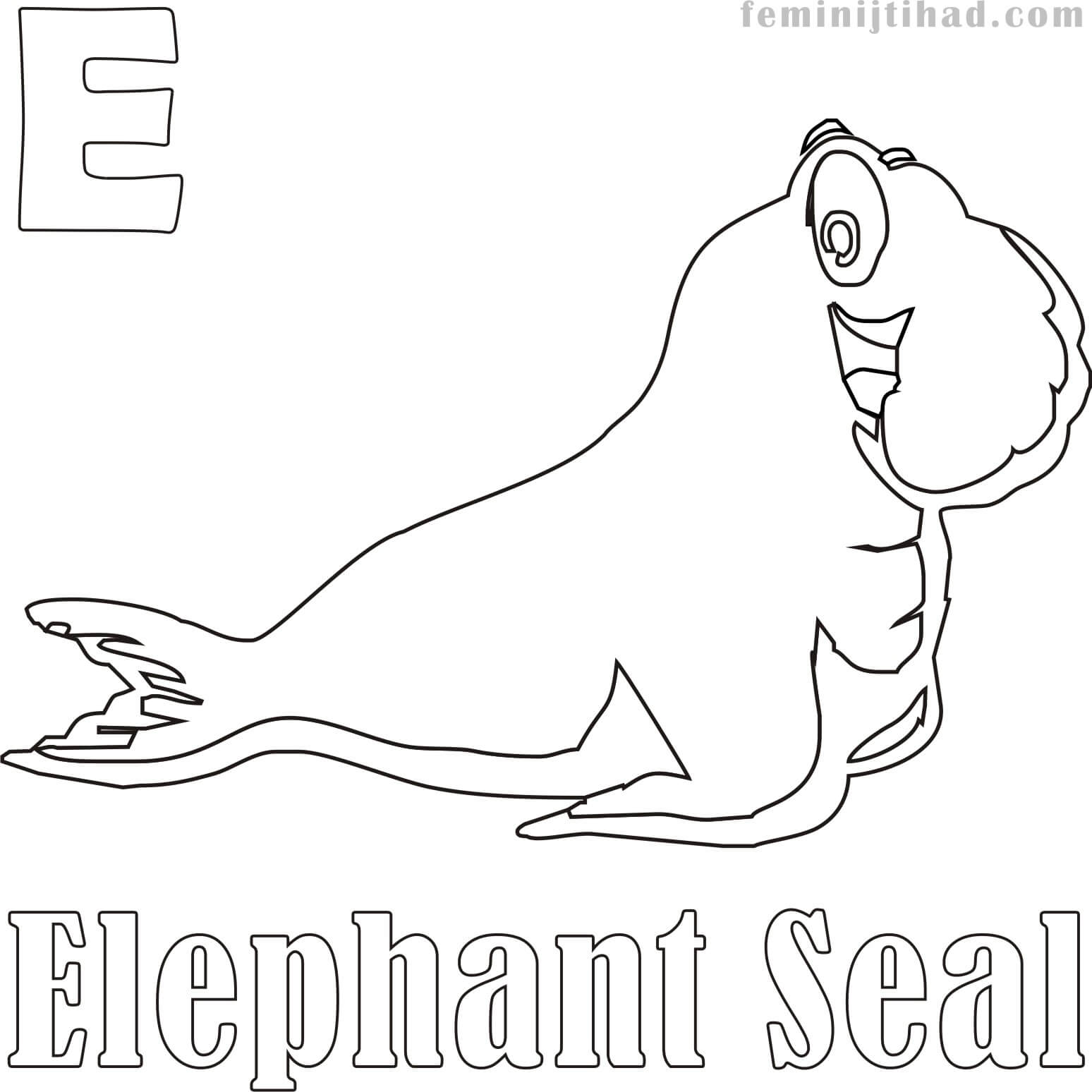 1548x1548 Elephant Seal Coloring Pages Coloring Pages For Kids