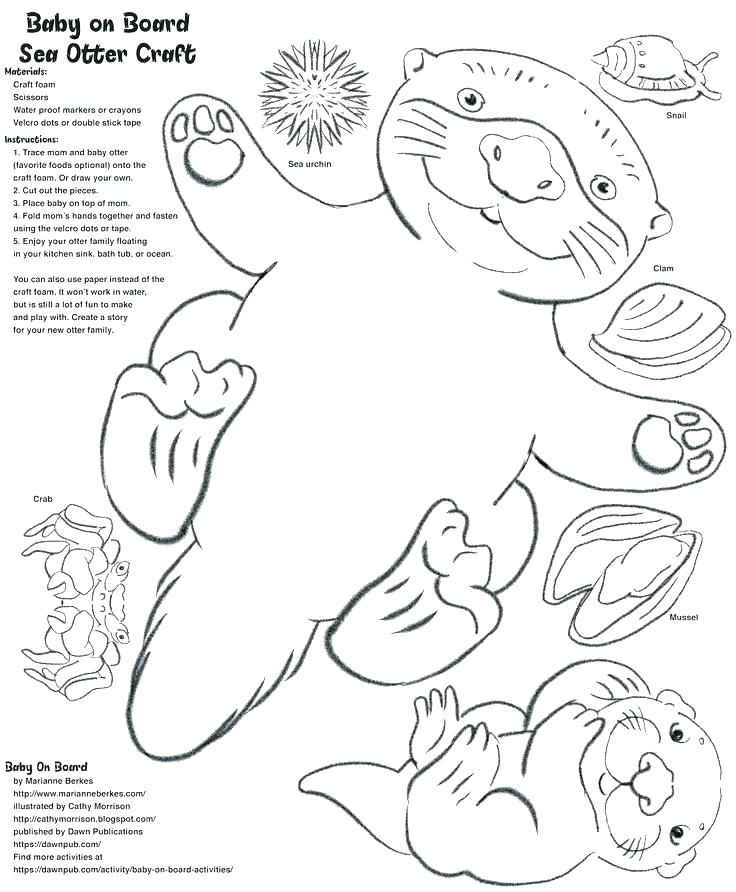 736x892 Sea Otter Coloring Pages Sea Otter Coloring Page Baby Sea Otter