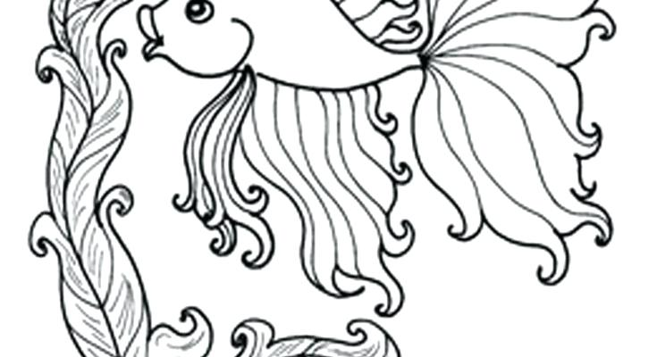 735x400 Ocean Fish Coloring Pages Ocean Life Coloring Pages Google Search