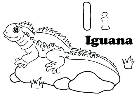 476x333 Gecko Coloring Pages Seascape Coloring Pages Marine Coloring Page