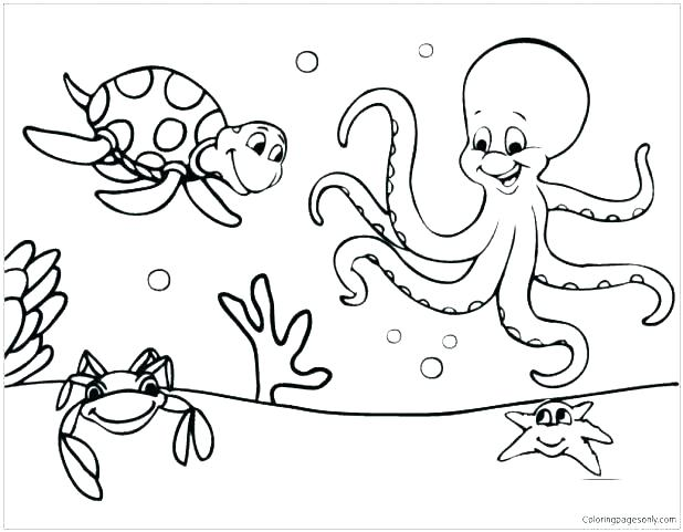 618x481 Marine Coloring Pages Marine Coloring Page Marine Coloring Pages
