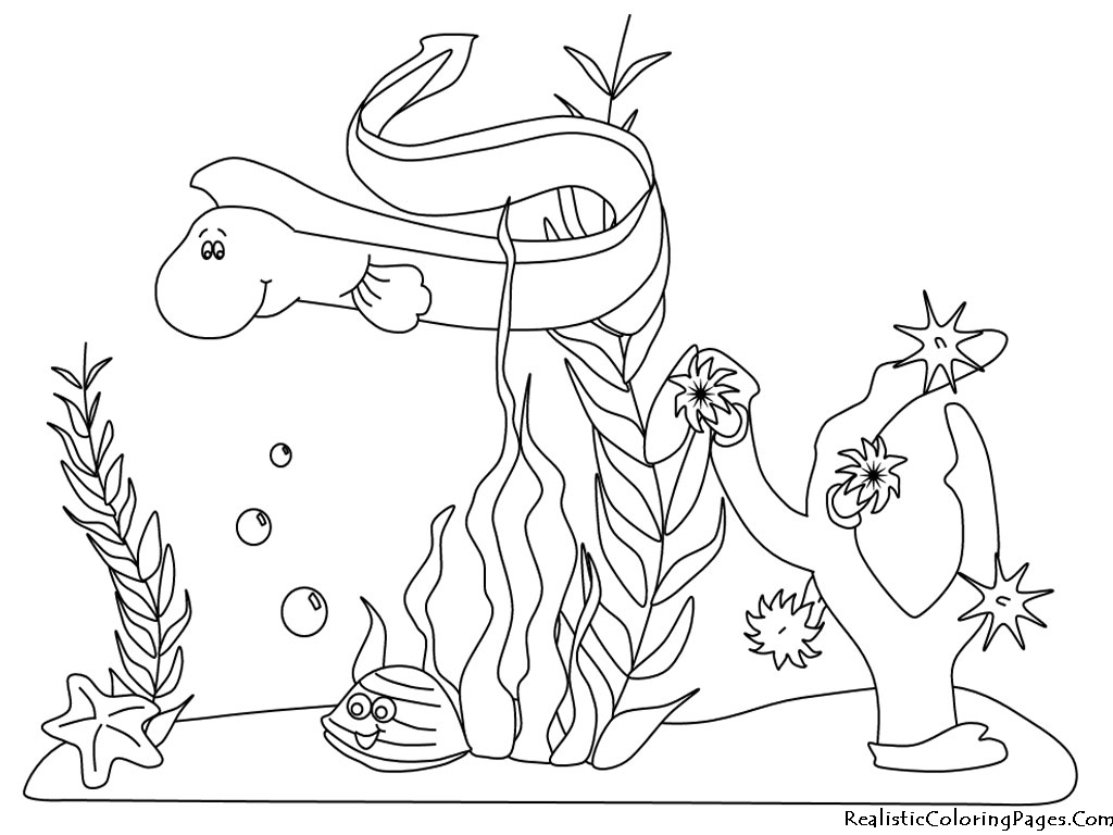 1024x768 Ocean Animals Underwater Coloring Page
