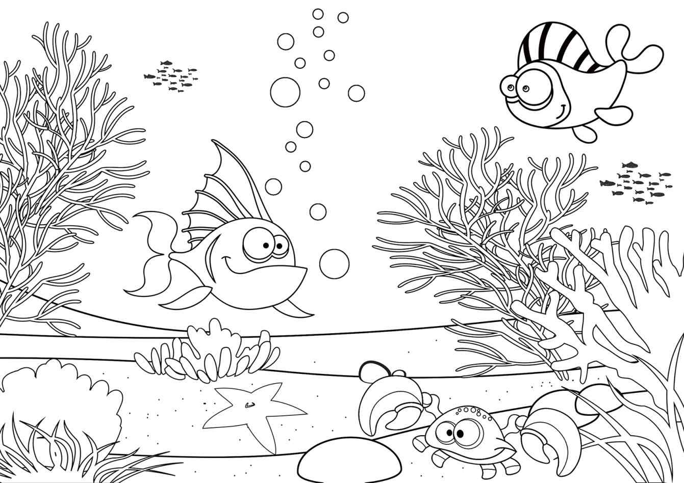 1341x948 Pond Habitat Coloring Pages Online Coloring Printable
