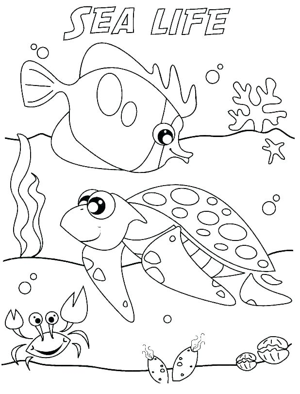 618x811 Seascape Coloring Pages Ocean Animal Coloring Pages Printable