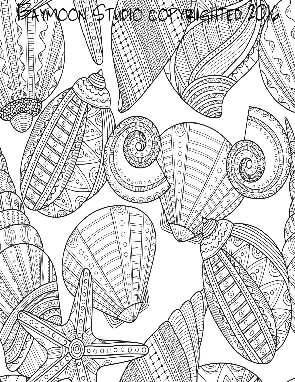 1159x1500 Seashells