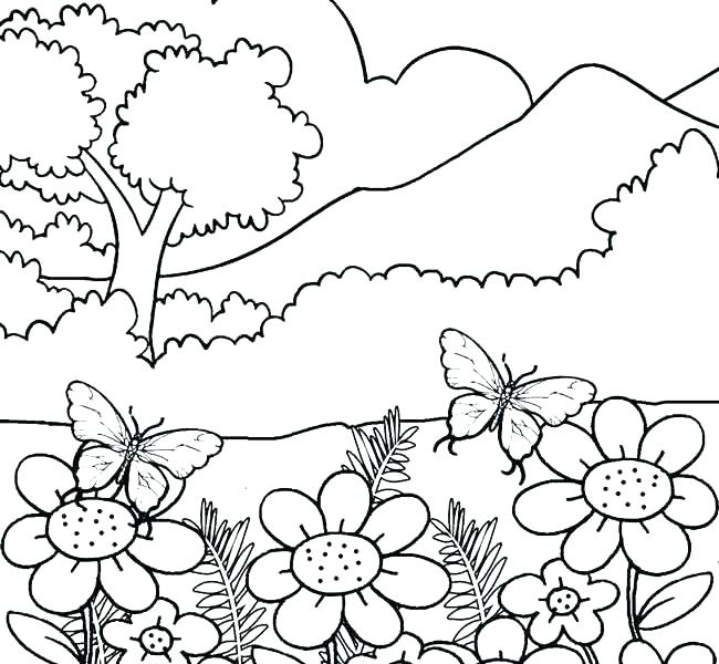 650x600 Adult Nature Coloring Sheets Coloring Pages For Adults Nature