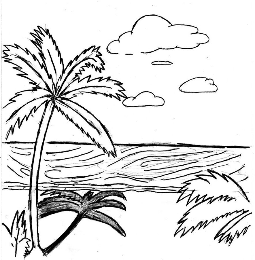 885x903 Beach Scene Coloring Pages Images