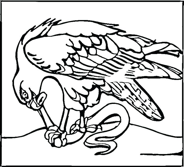 750x683 Seattle Seahawks Coloring Pages Coloring Pages Coloring Pages Pin