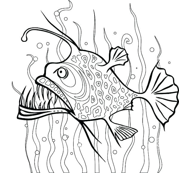 600x580 Seaweed Coloring Pages Angler Fish Between Seaweed Coloring Pages