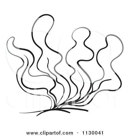 450x470 Seaweed Coloring Pages Seaweed Coloring Pages Free Printable