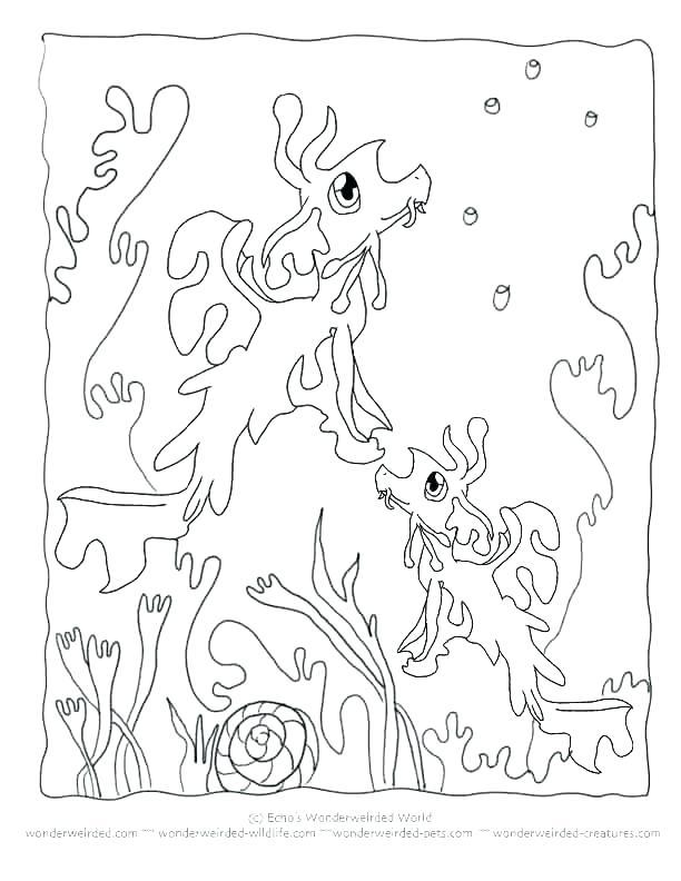 612x792 Seaweed Coloring Pages Seaweed Coloring Pages Free Printable Ocean