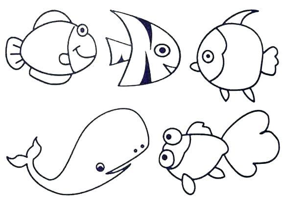 580x424 Seaweed Coloring Pages Seaweed Coloring Pages Popular Fish