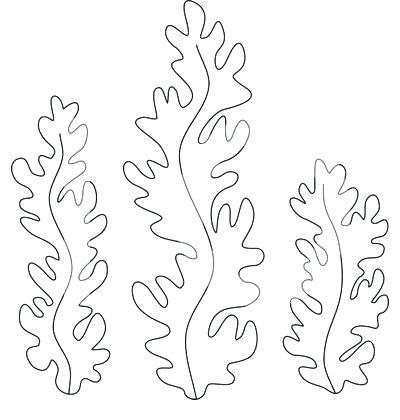 400x420 Coloring Pages Of Seaweed Seaweed Coloring Pages Printable Ocean