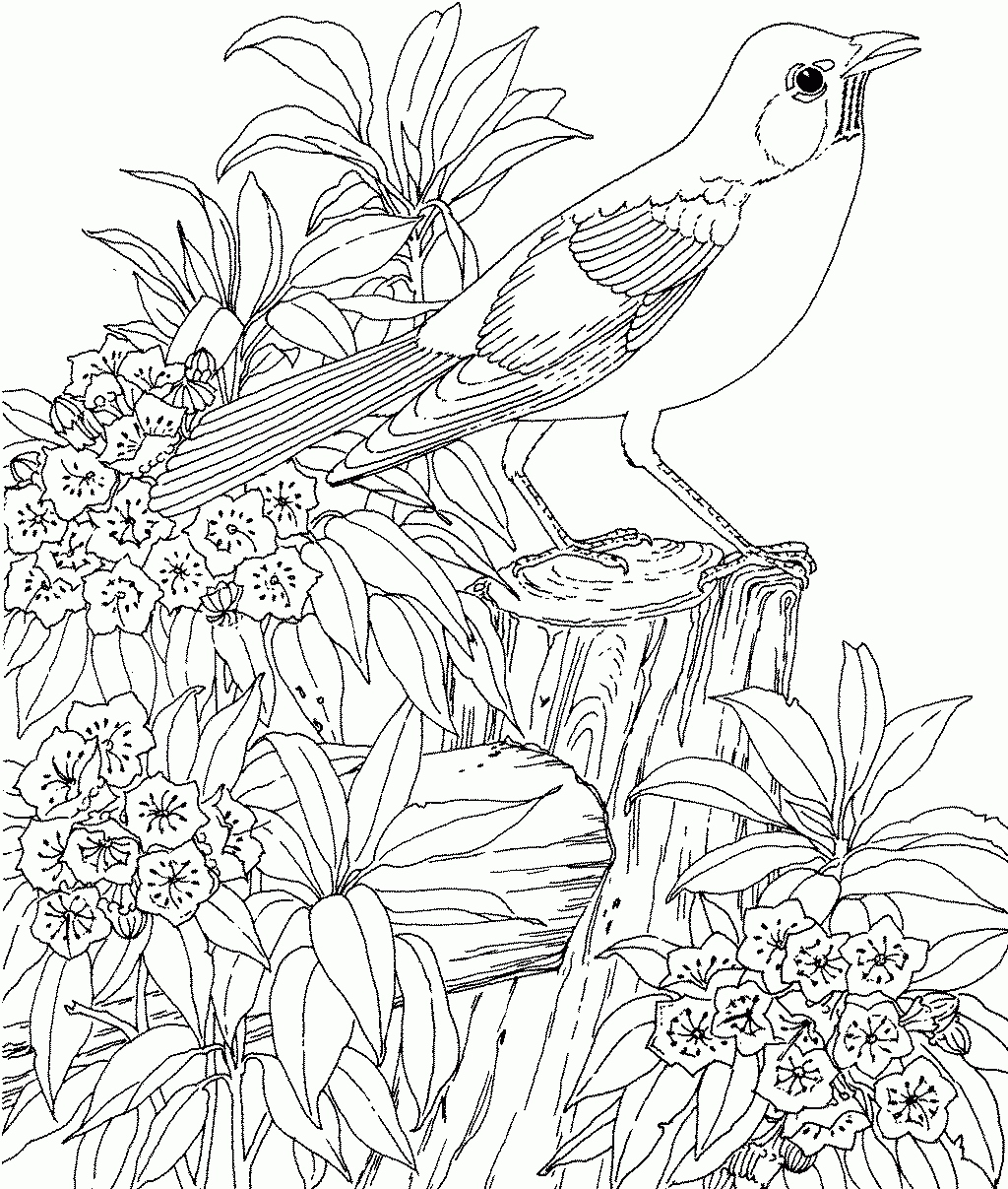 1024x1207 Garden Coloring Pages New Free Secret Garden Coloring Pages Logo