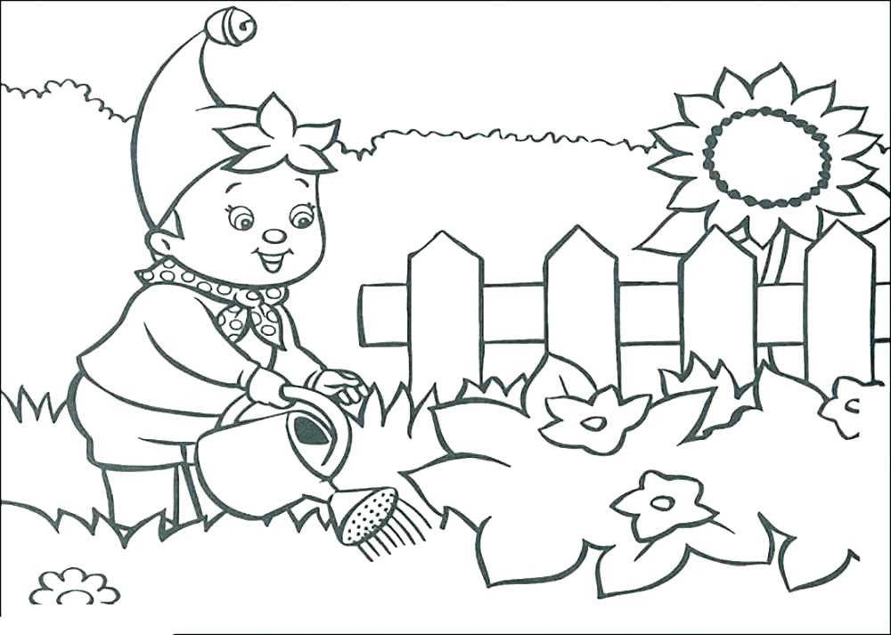 1000x713 Garden Coloring Pages Secret Garden Coloring Pages Flower Garden