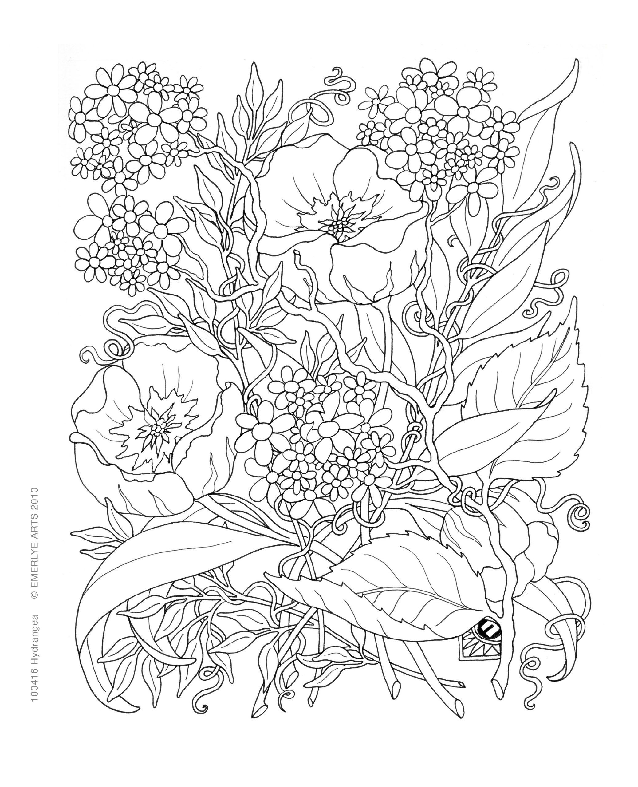 2076x2560 Inspirational Coloring Pages From Secret Garden, Enchanted Forest