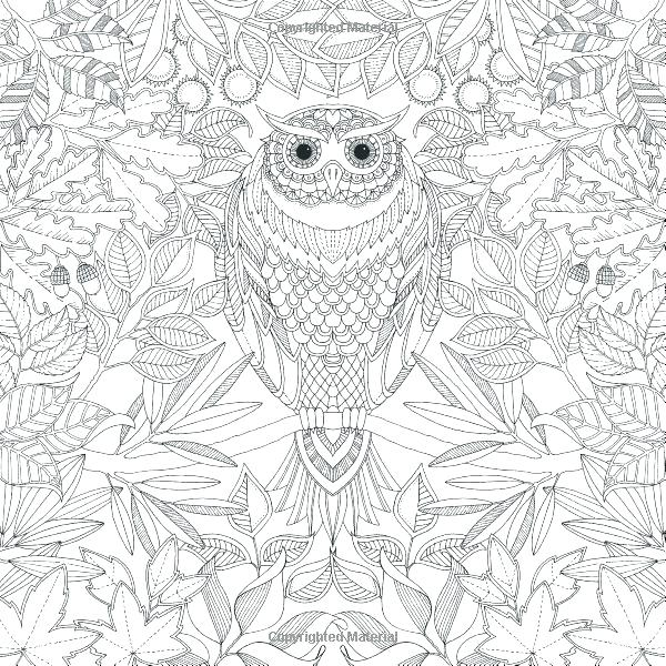 Secret Garden Free Coloring Pages At Getdrawings Com Free