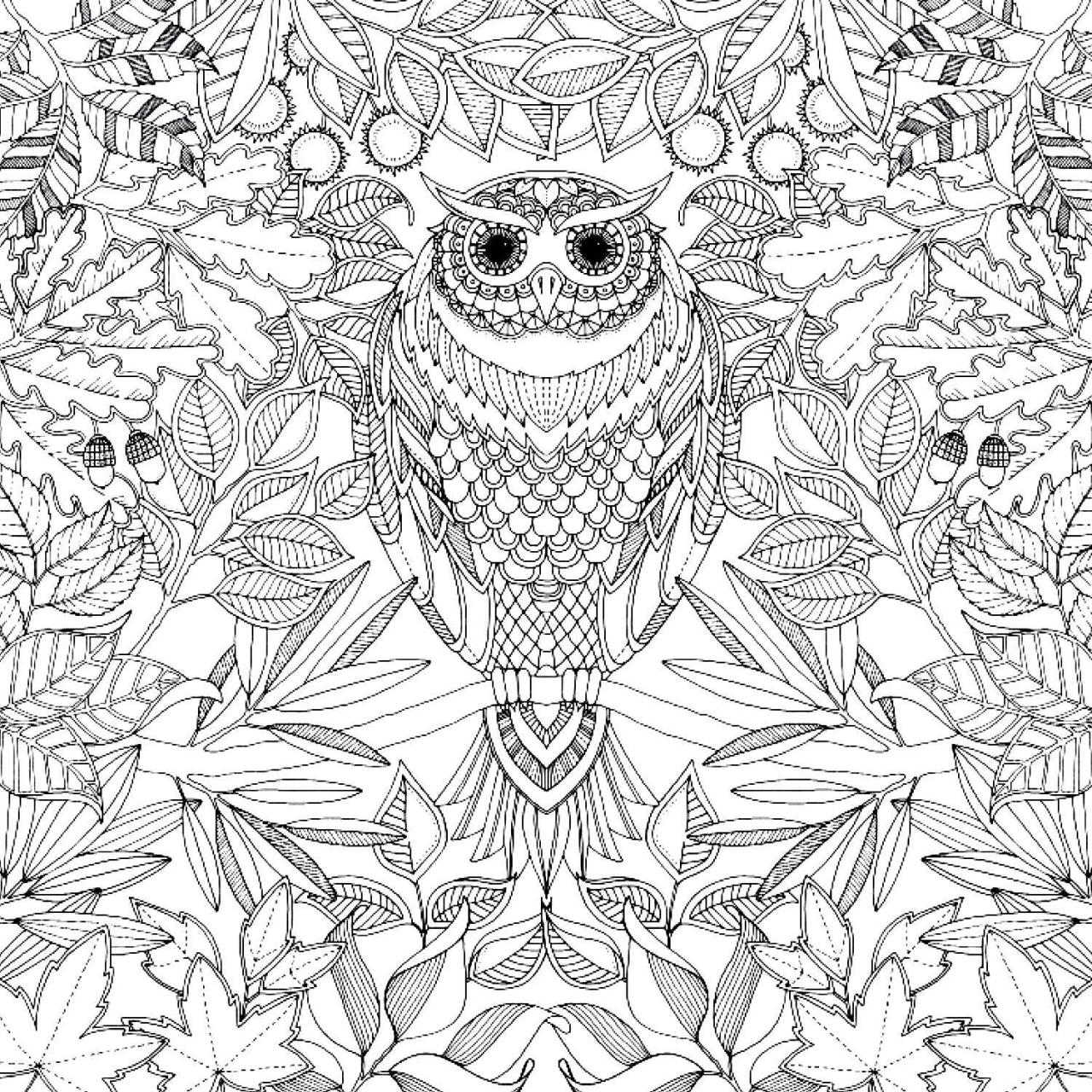 1280x1280 Secret Garden Johanna Basford Coloring Book Coloring Page For Kids