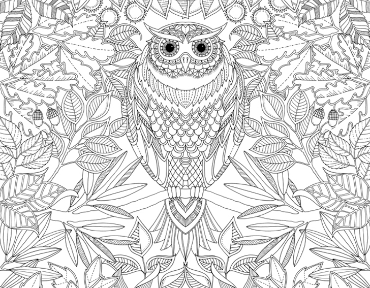 728x567 Coloring Book Adult Unleash Your Inner Child With Johanna Basfords