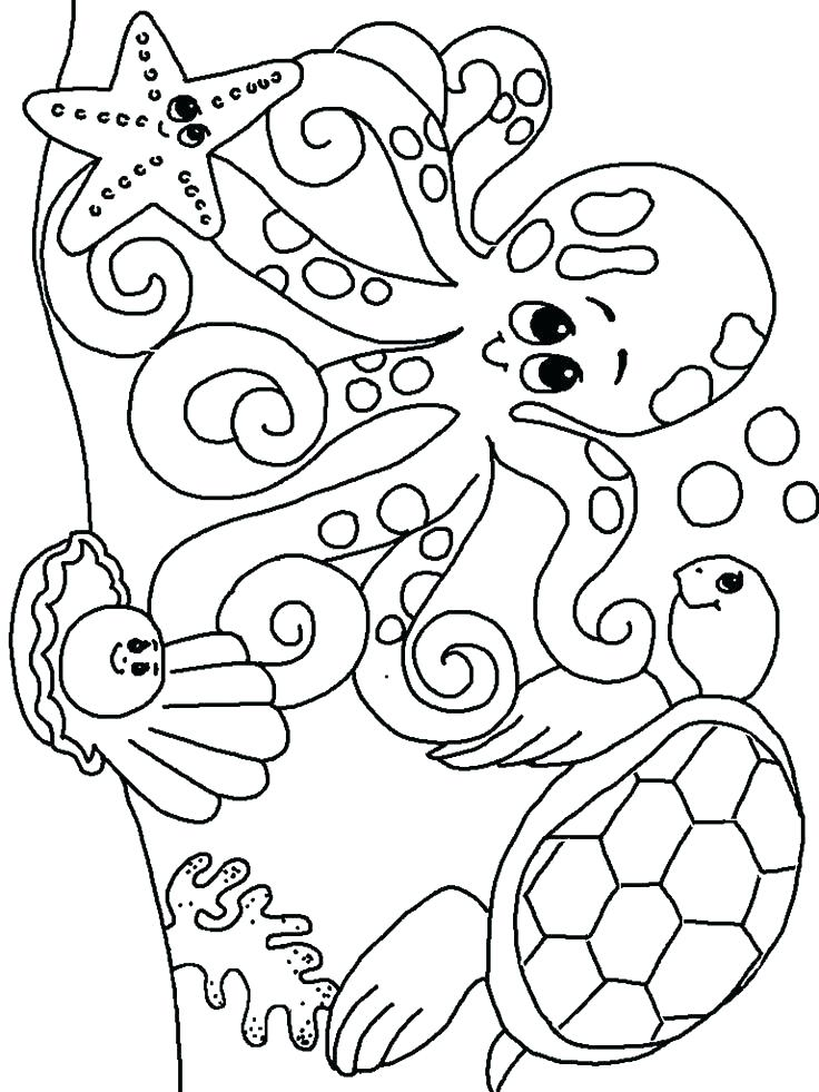 736x981 Clam Coloring Page Clam Coloring Page Coloring Pages Sea Animals
