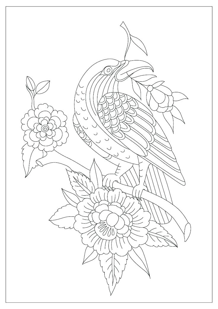 Seven Days Of Creation Coloring Pages