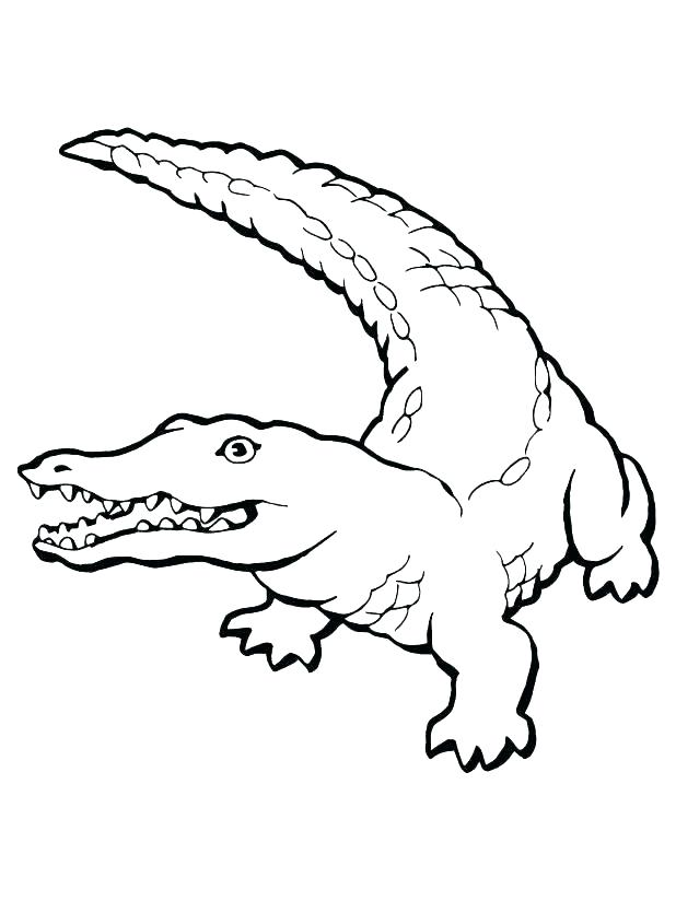 618x824 Coloring Page Alligator Coloring Page Alligator Coloring Page