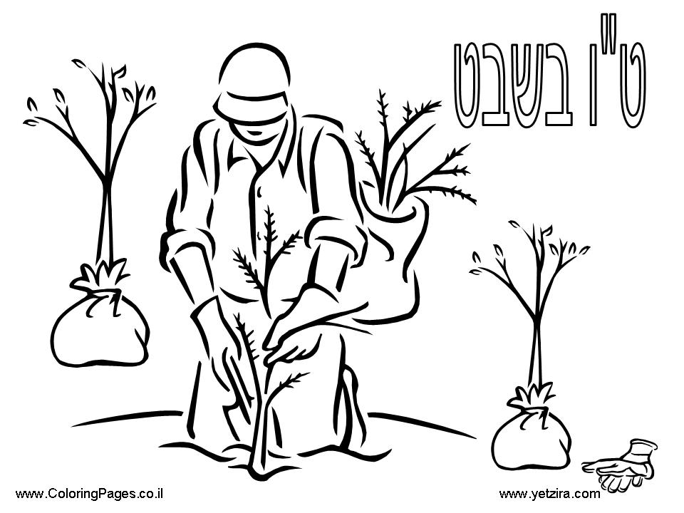 960x720 Shabbat Coloring Pages