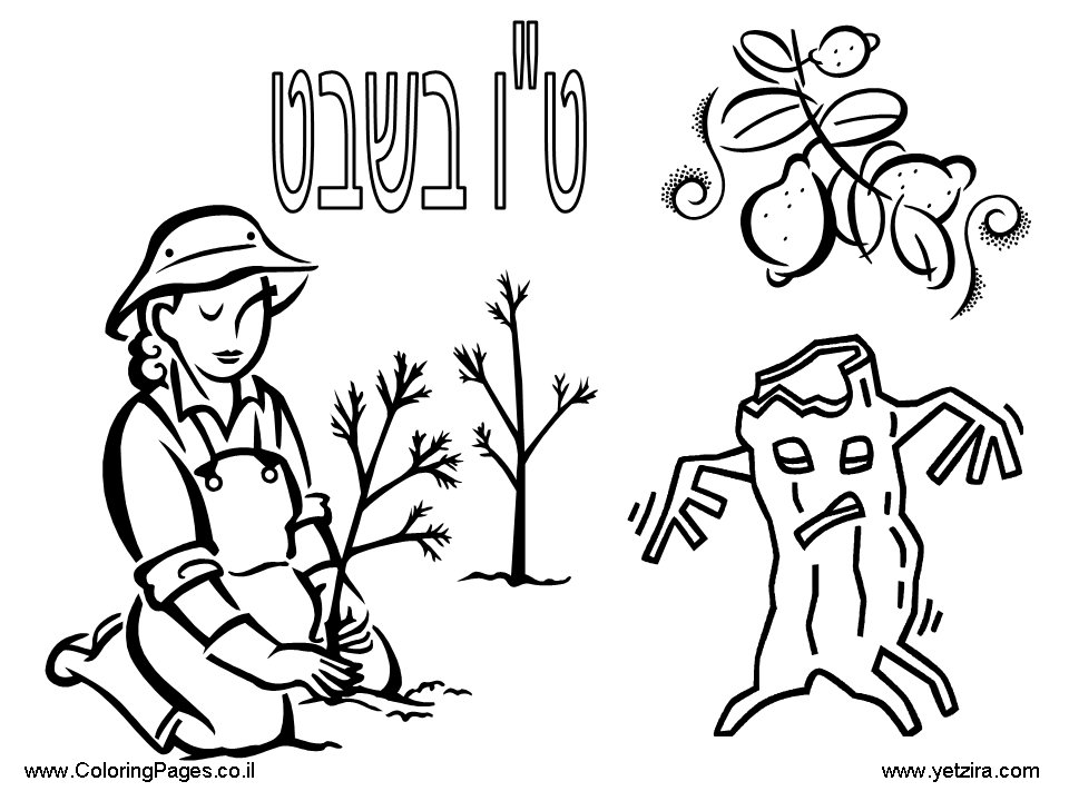 960x720 Shabbat Coloring Pages Many Interesting Cliparts