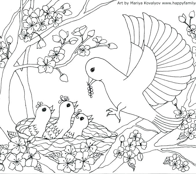 678x600 This Is Shabbat Coloring Pages Images Coloring Page Click