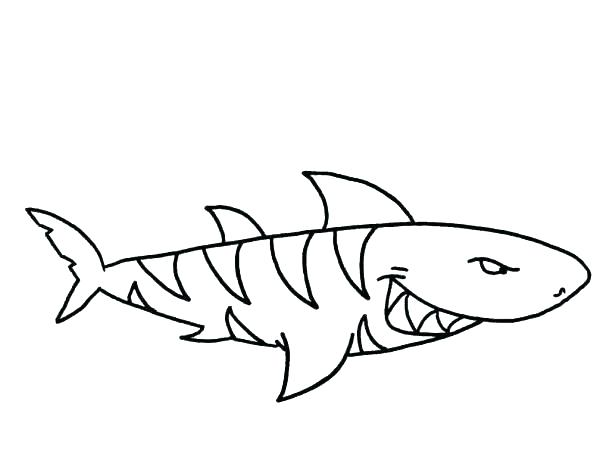 600x454 Free Printable Shark Coloring Pages Ideal Great White Shark
