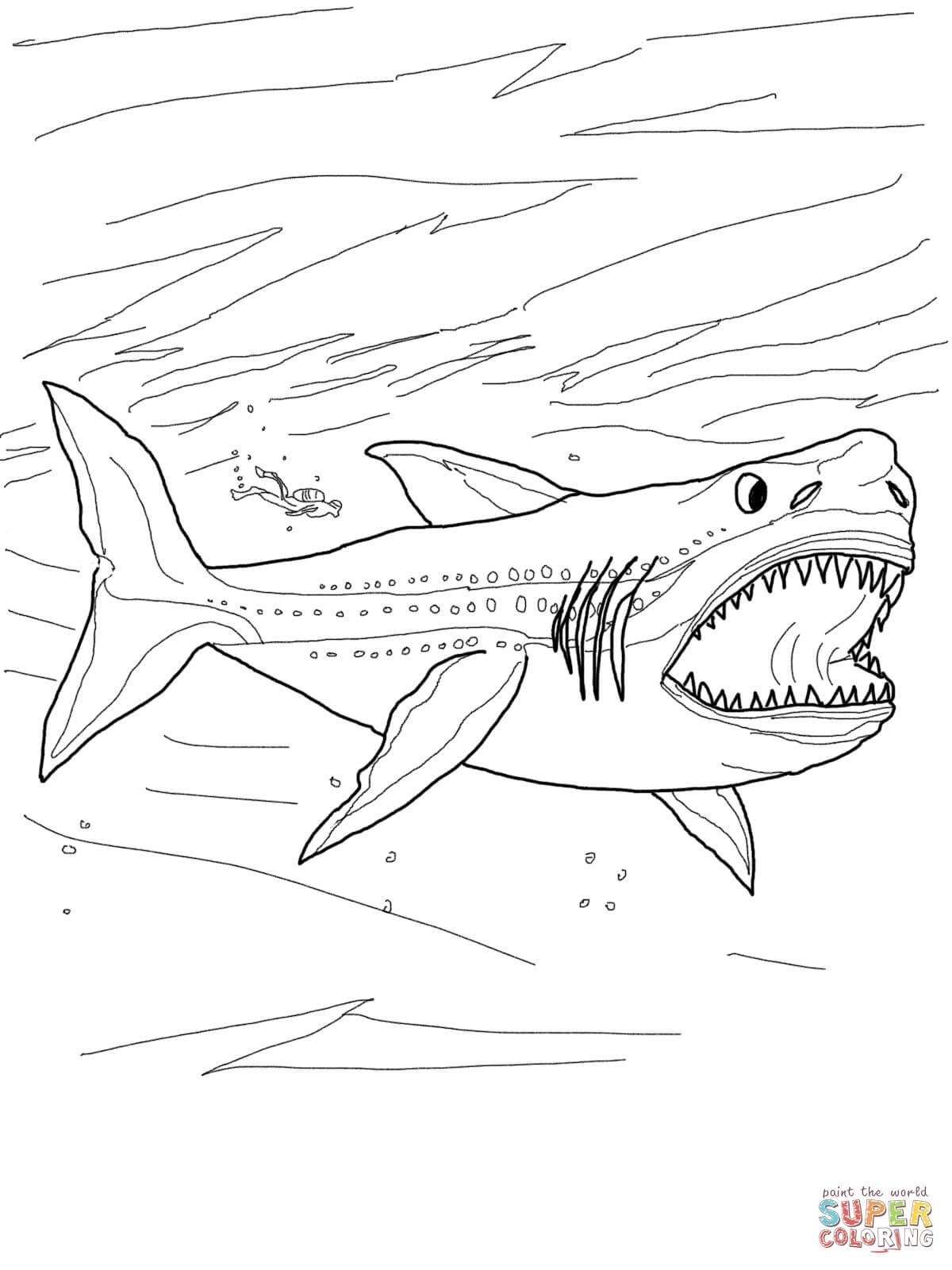 1200x1600 Megalodon Shark Coloring Page Free