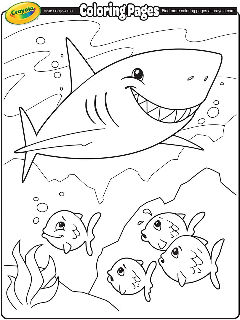 810x1080 Shark Coloring Page