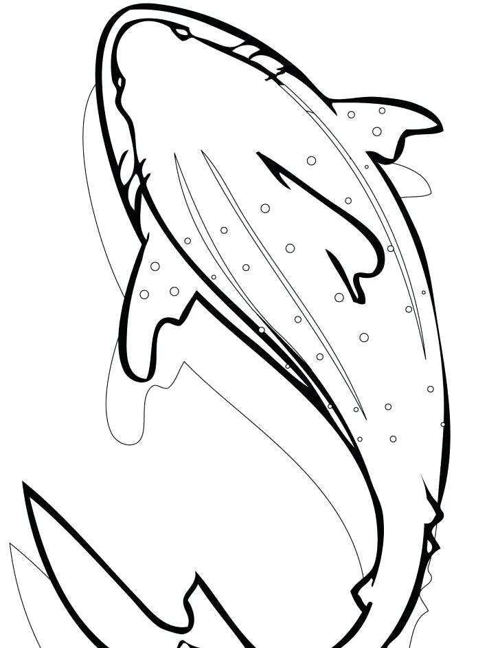 728x942 Animals Sharks Coloring Pages Bull Shark Whale Pages Whale Shark