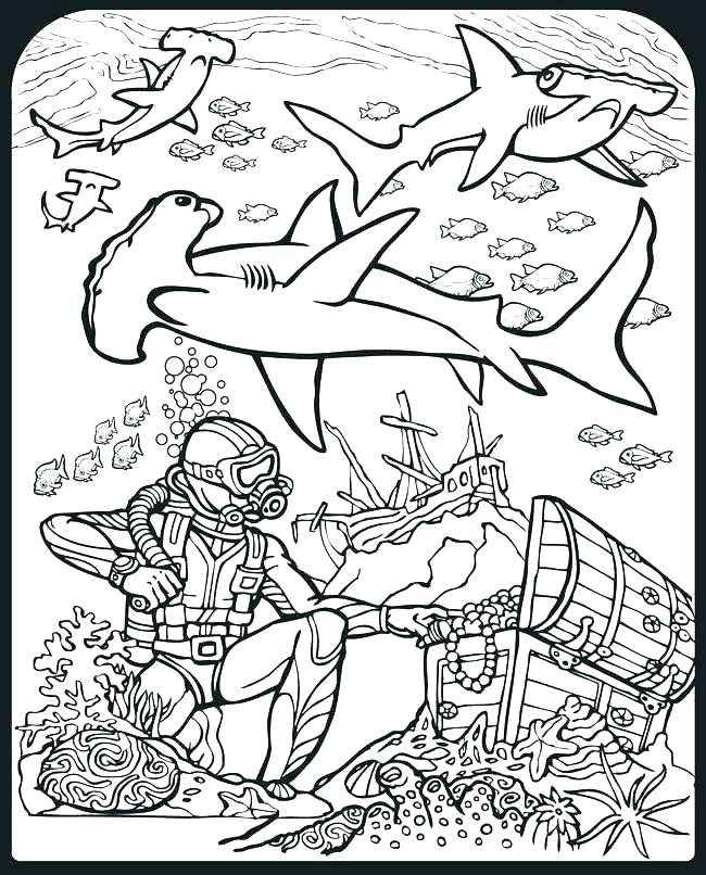650x806 Sharks Coloring Pages Shark Color Pages Hammerhead Shark Coloring
