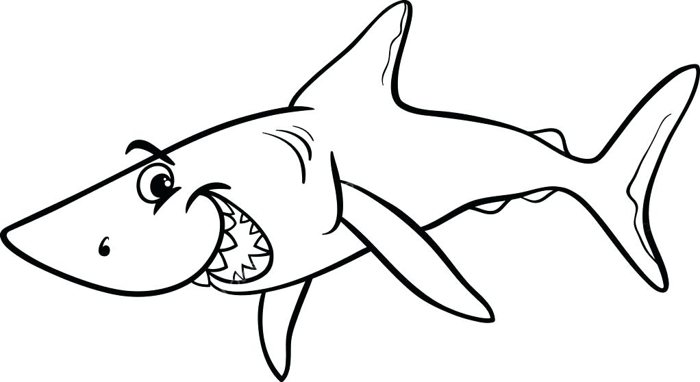 1022x558 Cartoon Shark Coloring Pages Color Bros