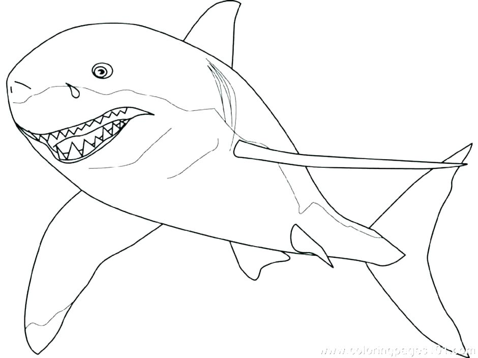 940x704 Shark Coloring Pages Printable Shark Coloring Book Shark Coloring